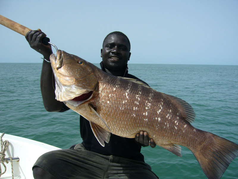 carpe-rouge-guinee-bissau-world-predator-fishing