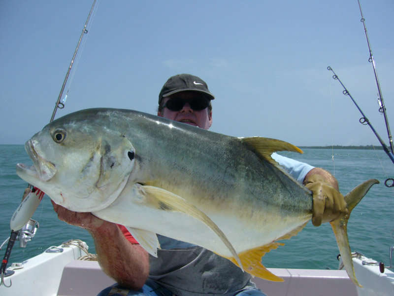 jolie-carangue-des-bijagos-world-predator-fishing